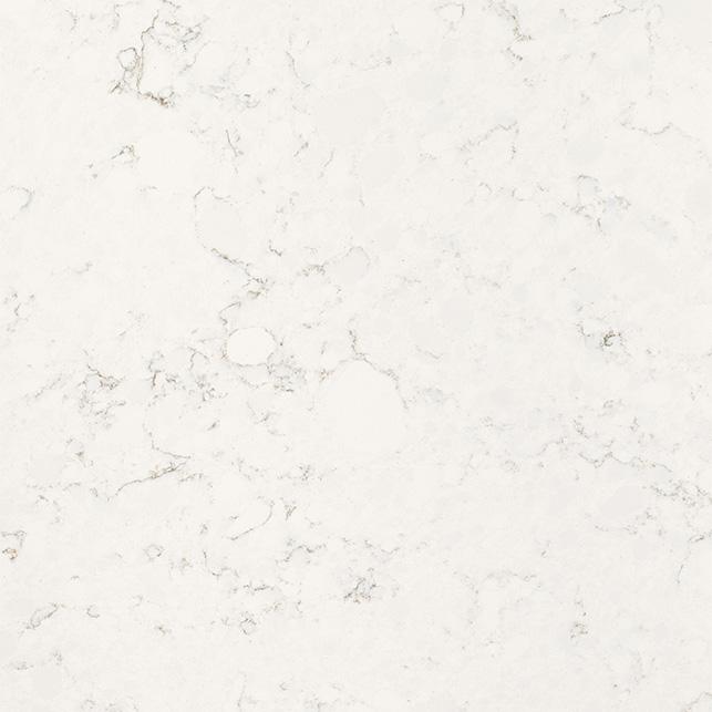 Quartz Marble Victoria White